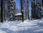 Delnice - Park kralja Tomislava
