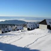 Ski na Rogli