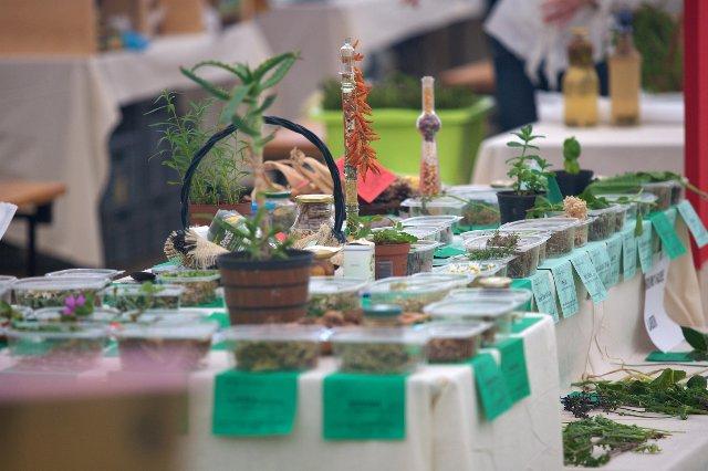 Festival samoniklog bilja