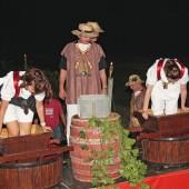 Ružica Vinodola 2011
