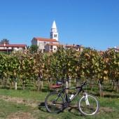 Bicikliranje po Krasu
