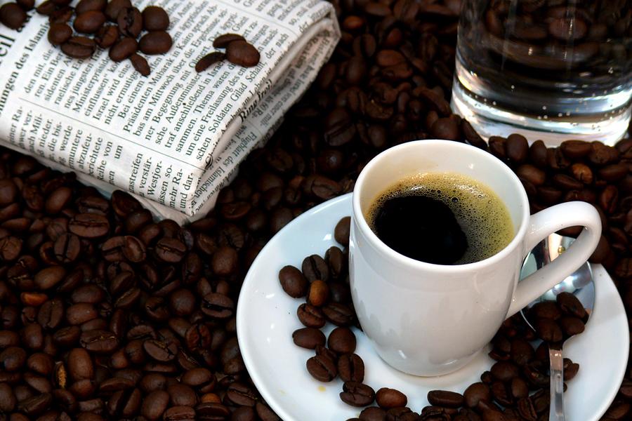 Festival kave