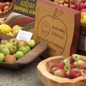 Dan jabuka u Brodu na Kupi